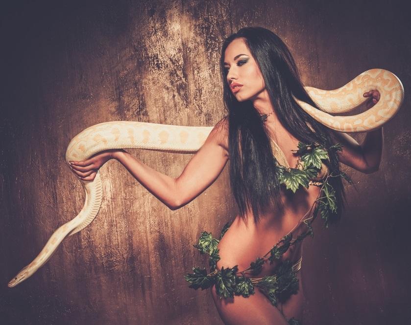 古来より幸運とされてきた蛇の夢占いとは?噛まれる夢やたくさん出てきた時の状況も確認してみよう